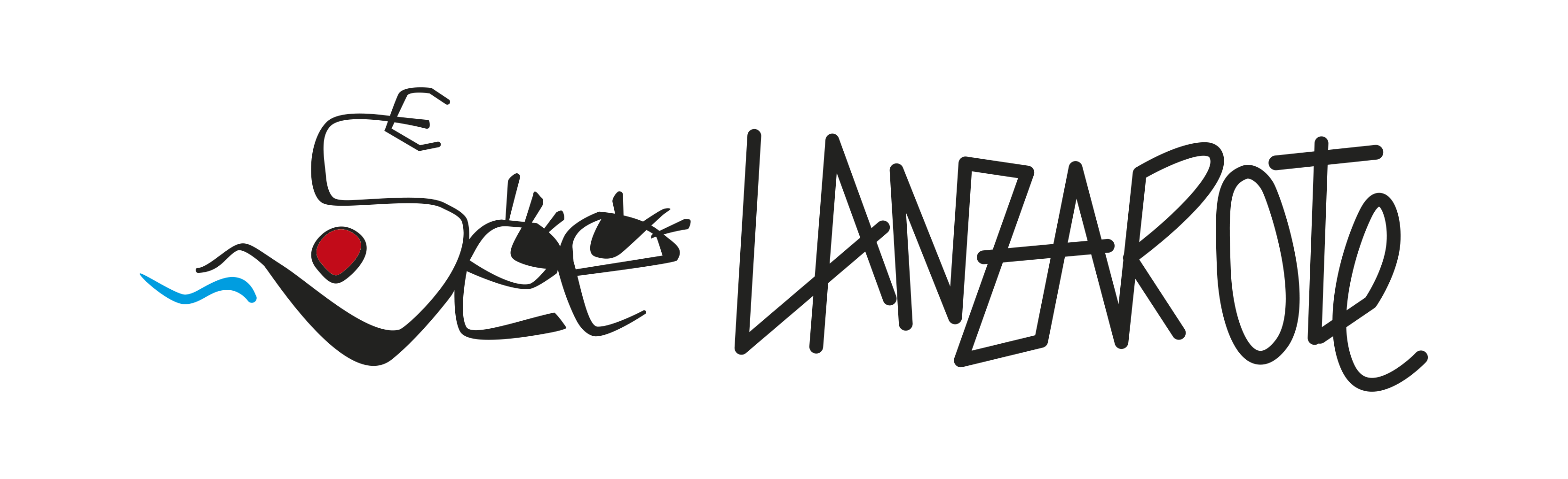 See Lanzarote